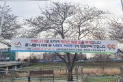 해미천의 '벚꽃 길'..오는 2일부터 주요 진·출입로 통제